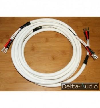Chord Odyssey 4 kabel...